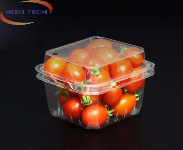 Hộp nhựa P250A đựng trái cây