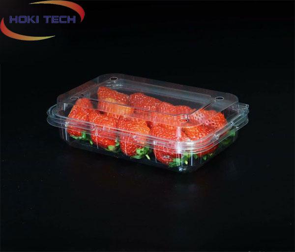 Hộp nhựa P350A đựng trái cây