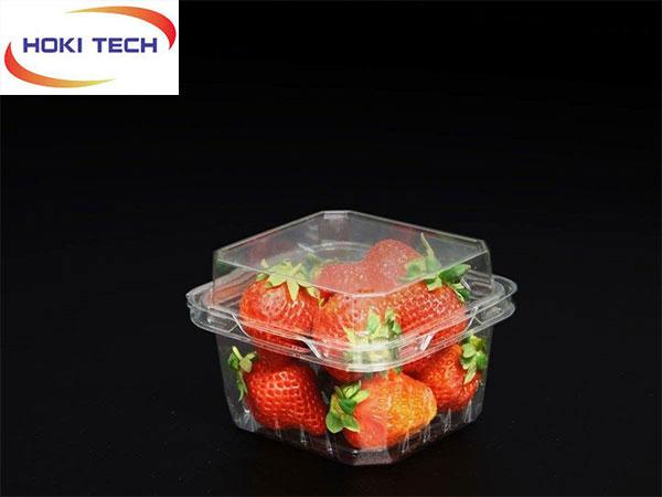 Hộp nhựa P500D đựng trái cây