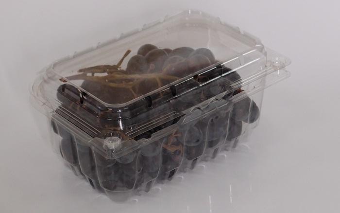 Hộp nhựa P500B đựng trái cây